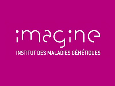 L Institut Imagine